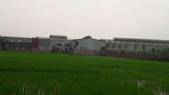 Hàng loạt nhà xưởng ngang nhiên tồn tại trên đất nông nghiệp trong một thời gian dài.