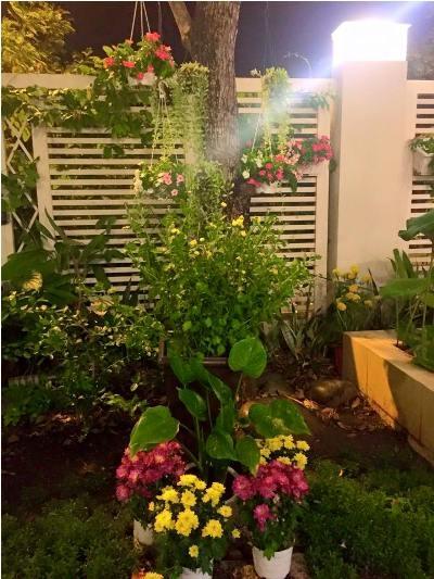 Không gian ngôi nhà tràn ngập sắc hoa và cây cỏ. Ảnh: internet.