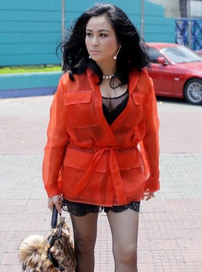 Có vẻ như càng nhiều tuổi, Thanh Lam càng muốn mình trẻ lại nên đã chọn những trang phục mang màu sắc chói chang như thế này, và đặc biệt chiếc túi lông chẳng ăn nhập với bộ trang phục này khiến cô trông thật luộm thuộm. Ảnh: internet.