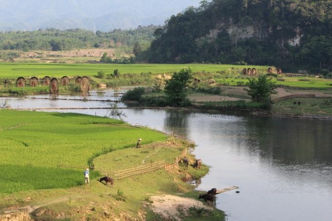 Các guồng ở ruộng đồng Chiêng Ngam thuộc trời tây Xứ Nghệ. (ảnh: Minh Long).