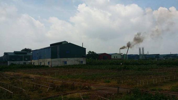 Hàng loạt nhà xưởng xây dựng trái phép trên đất nông nghiệp tại Dương Liễu.