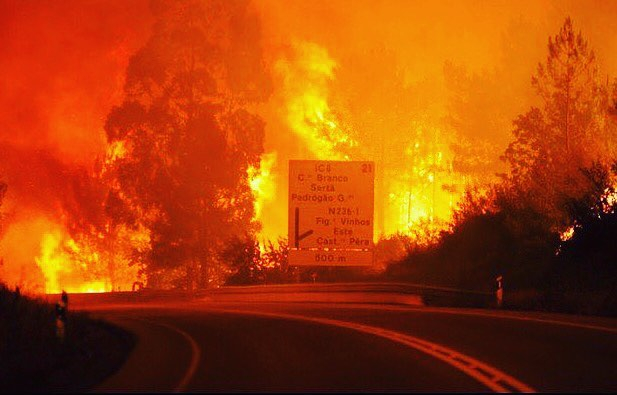 Quan chức của Bộ nội vụ Bồ Đào Nha Jorge Gomes khẳng định đã có ít nhất 57 người thiệt mạng, 59 người bị thương. Nhiều người đã bỏ mạng khi kẹt lại trong xe, trong khi số khác chết ngạt vì khói. ( Ảnh: Instagram)