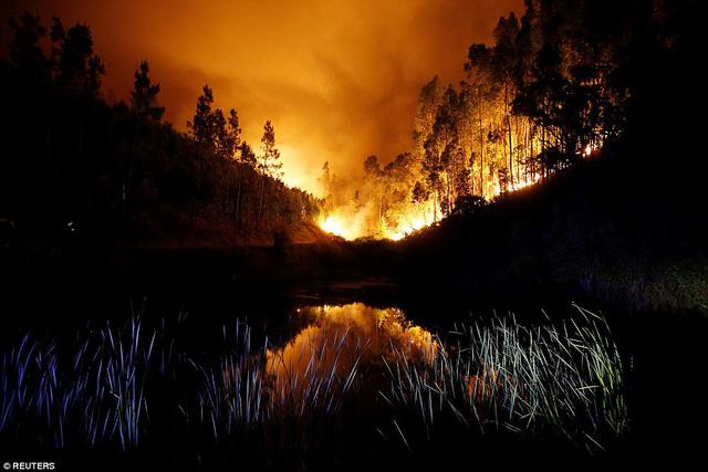 """""""Đây là bi kịch khủng khiếp nhất do cháy rừng gây ra trong những năm gần đây"""", thủ tướng Bồ Đào Nha António Costa cho hay. (Ảnh: Reuters)"""