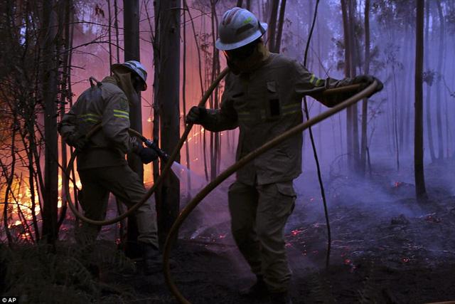 """""""Đây là khu vực thường hay xảy ra cháy rừng, nhưng vụ cháy lần này quả thật thảm khốc. Tôi thực sự bàng hoàng vì số người thiệt mạng"""", trích lời ông Valdemar Alves, thị trưởng thành phố Pedrogao Grande. (Ảnh: AP)"""