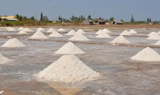 Hàng năm, sản lượng muối thương phẩm Bạc Liêu cung ứng ra thị trường lên tới trên dưới 250 ngàn tấn.
