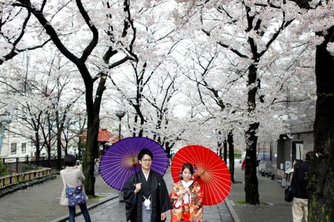 Khung cảnh thơ mộng tại Kyoto.