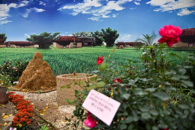 Một góc vườn hồng mang chủ để đồng quê Việt Nam, Hoa hồng được kết hợp với cọ rơm, sông suối ...làm nổi lên những nét đặc sắc của làng quê Việt Nam.