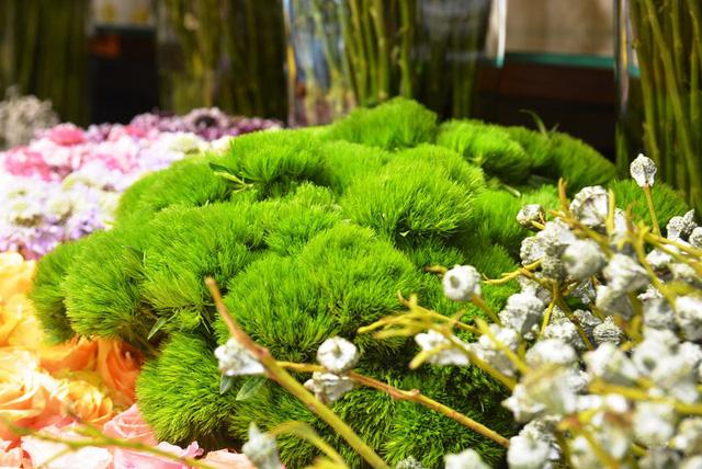 Hoa Green Wicky mới lạ cho mùa lễ 20/10 năm nay.