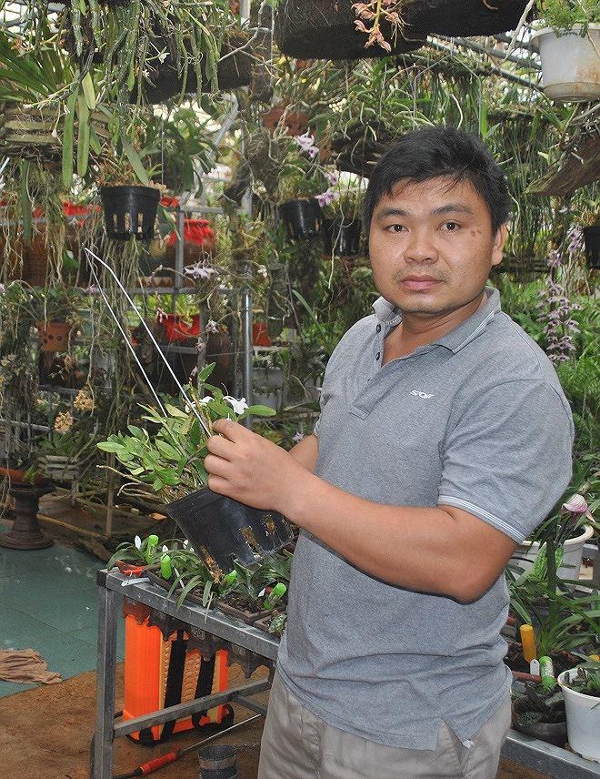 Theo anh Công, với việc săn tìm như hiện nay, nguy cơ tuyệt chủng lan rừng là không xa