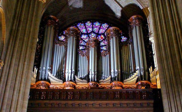 Cây đàn Organ khổng lồ nguyên bản, một trong những nhạc cụ nổi tiếng nhất thế giới, có từ thời Trung cổ cũng là một tài sản vô giá bên trong Nhà thờ Đức Bà Paris.Qua thời gian, những nghệ nhân chế tác đàn đã không ngừng cải tiến nó. Dù vậy, một số ống đàn tạo ra âm thanh vẫn được giữ nguyên. Cây đàn có tới 8.000 ống, 5 bàn phím và 109 phím, là đàn organ ống lớn nhất Pháp.