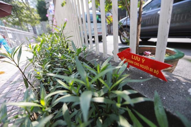 Theo UBND phường 12 (quận 5), sau hơn hai tháng kiên quyết lặp lại trật tự lòng lề đường, phường đã hoàn tất việc lắp dựng lan can dành lối đi cho người đi bộ trên vỉa hè với tổng chiều dài hơn 242 m. Ngoài ra, phường còn thực hiện sửa chữa 2 nhà vệ sinh công cộng, lắp đặt 4 camera giám sát ở đường Nguyễn Chí Thanh và Thuận Kiều. Thời gian tới, địa phương sẽ cho lát lại toàn bộ vỉa hè trên các tuyến đường trước và bên hông Bệnh viện Chợ Rẫy.