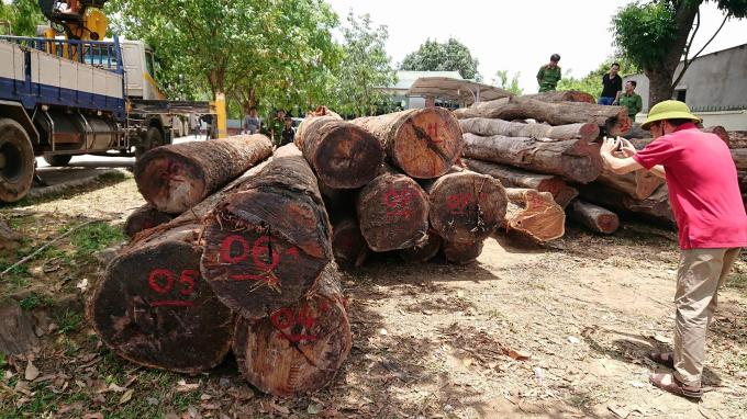 Gỗ lậu của Phượng''râu'' bị Bộ công an thu giữ tại thị trấn Ea T'Linh, huyện Cư Jút, Đắk Nông
