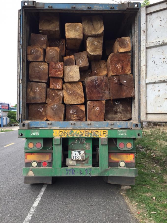 44,5m³gỗ Dổi (Nhóm 3) không biết bao nhiêu cây rừng ngã xuống.