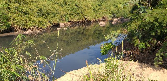 Màu đen của chất thải nhà máy tinh bột sắn Ea Kar đang bức tử sông Krông Năng.