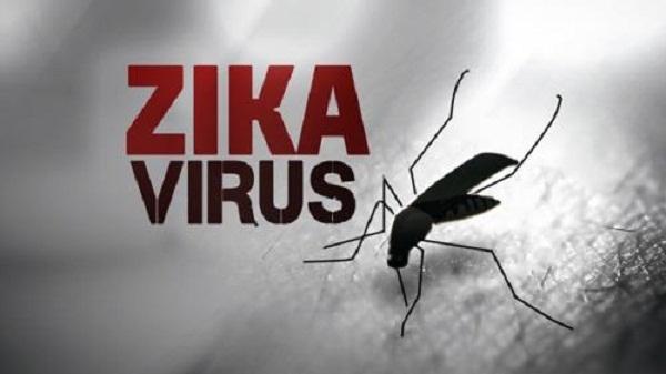 Khánh Hòa và TP HCM công bố hết dịch do virus Zika. Ảnh: minh họa