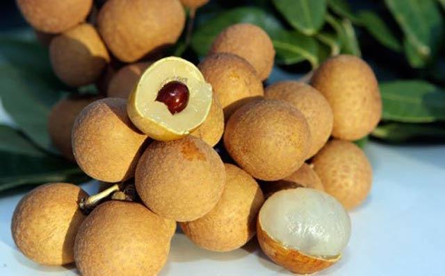 Nhãn lồng Hưng Yên có cùi dày, hạt nhỏ, mùi thơm nhẹ dịu là nhận biết để phân biệt nhãn Trung Quốc.