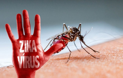 Thêm 1 người nước ngoài nhiễm virus Zika tại Việt Nam