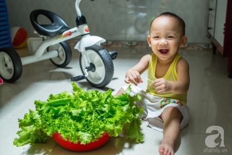 Con trai bên rổ rau ba mẹ tự trồng.