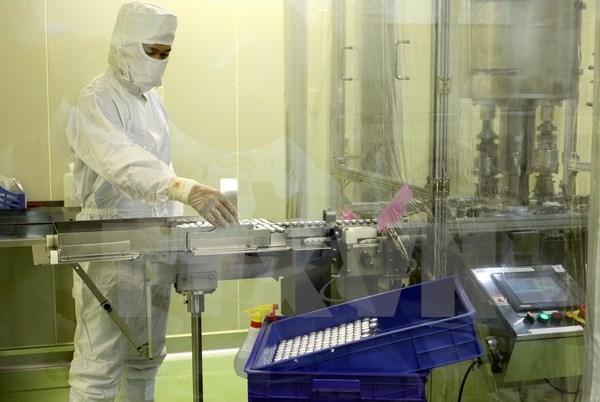 Quy trình sản xuất và kiểm định chất lượng vắcxin bán thành phẩm. Ảnh: TTXVN/Vietnam+.