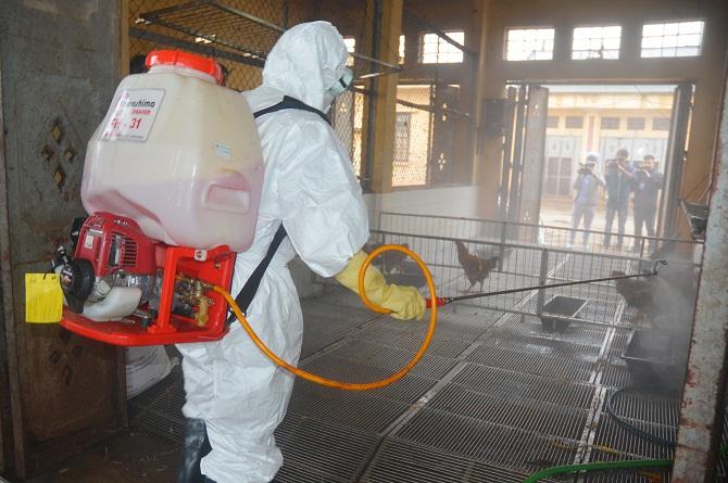 Cán bộ Chi cục thú y phun hóa chất tại khu vực chợ. Ảnh: Vân Nguyễn