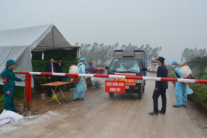Lực lượng thú y lập chốt kiểm dịch động vật khu vực gần chợ Hà Vĩ. Ảnh: Vân Nguyễn
