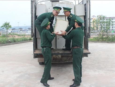 Lực lượng chức năng thu giữ hàng chục nghìn quả trứng gà nhập lậu