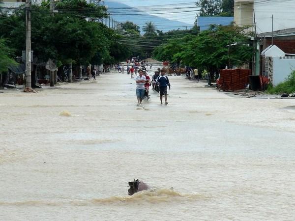 Nước lũ trên các sông đang tiếp tục lên nhanh, cần đề phòng xảy ra lũ quét trên sông. Ảnh: minh họa/Nguồn: TTXVN