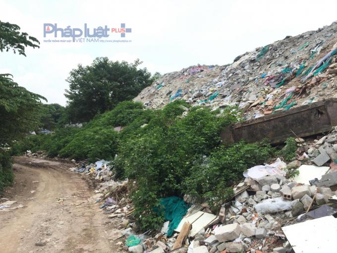 Trong núi rác thải này nhiều lúc còn có cả xác động vật.