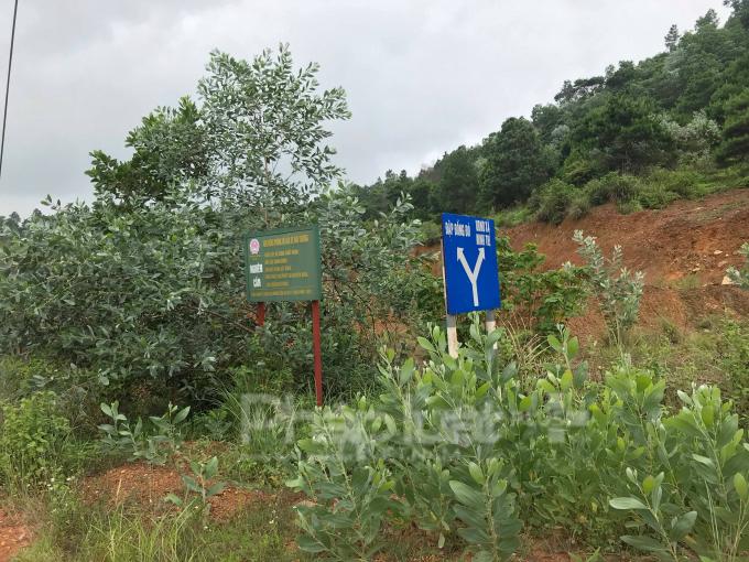 Nghi vấn rừng phòng hộ Sóc Sơn bị khoét núi phá đồi