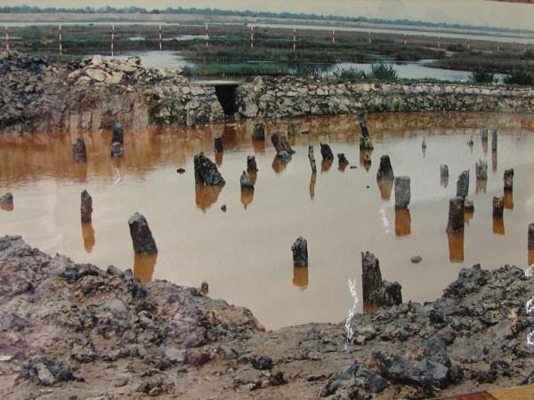 Bãi cọc Bạch Đằng- Phường Yên Giang.