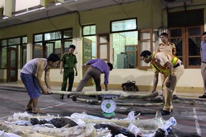 Số gỗ sưa bị bắt giữ tại cơ quan Công an.