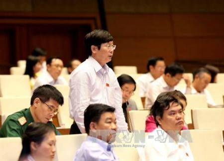 Đại biểu Đỗ Mạnh Hùng (tỉnh Thái Nguyên) phát biểu ý kiến.