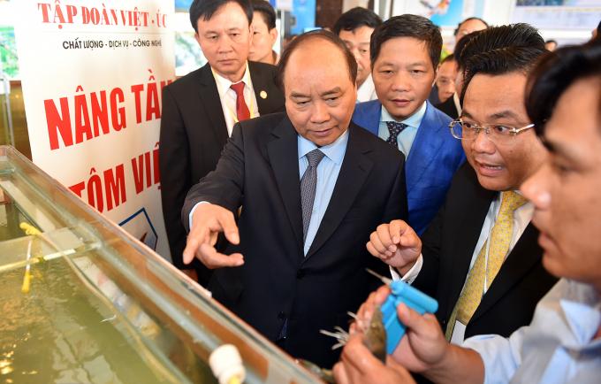 Thủ tướng thăm quan chất lượng tôm giống của tập đoàn Việt-Úc.