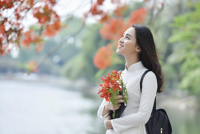 Image result for hoa phượng và thiếu nữ