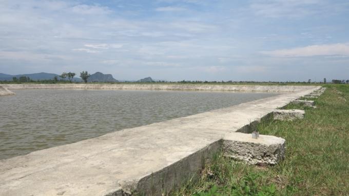 Hồ nước cạnh trụ sở UBND xã Diễn Quảng nơi 3 học sinh bị đuối nước.