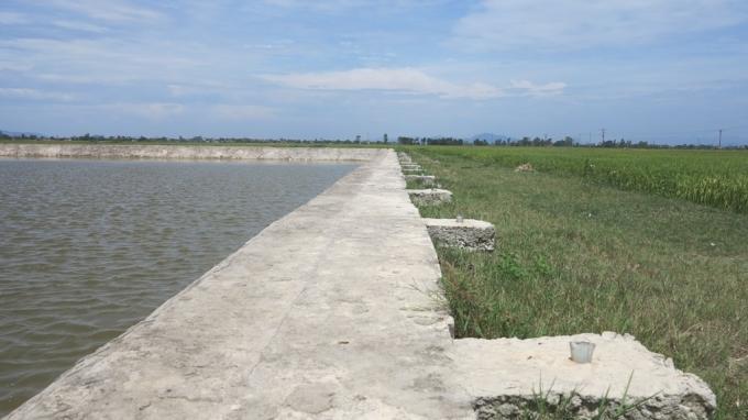 Hồ nước nơi các em em bị đuối nước tử vong.