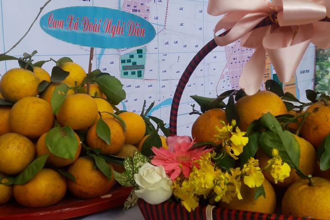 Cam Xã Đoài Nghi Diên một trong những giống cam nổi tiếng