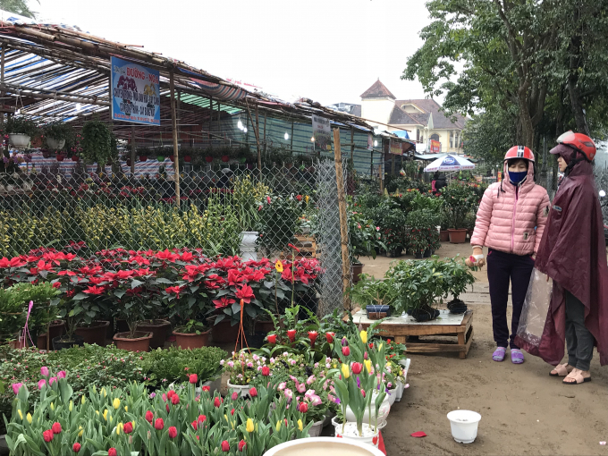 Tại các cửa hàng hoa cũng khá vắng khách.