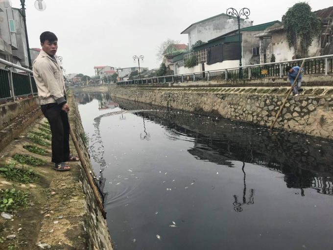 Một nhóm công nhân dùng lưới để thu gom cá chết trên Hào Thành Cổ Vinh.