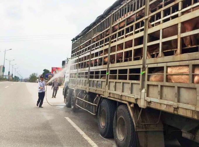 Lực lượng chức năng lập chốt kiểm dịch tại khu vực phía Bắc tỉnh Nghệ An phòng dịch tả lợn Châu Phi.