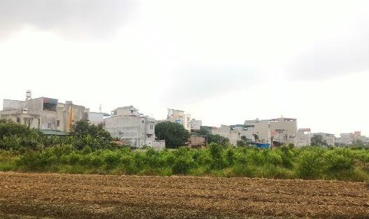 """Những ngôi nhà kiên cố """"mọc"""" trên đất nông nghiệp."""