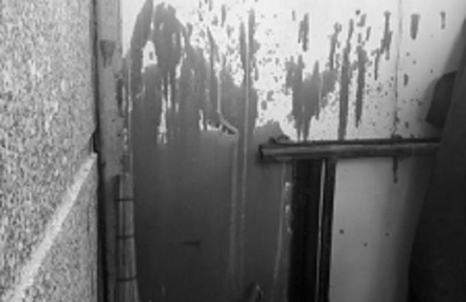 Gia đình ông Nuôi liên tục bị khủng bố bằng sơn.