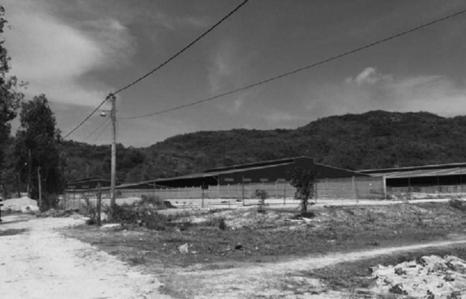 Khu đất của các hộ dân bị cưỡng chế san lấp.