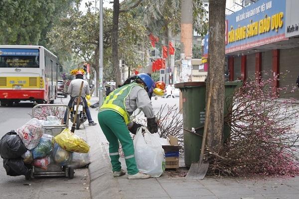 Hà Nội: Sau tết, xác hoa đào ngập phố