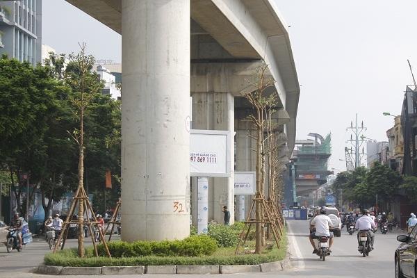 Những hàng cây được trồng dưới tuyến đường sắt trên cao Cát Linh - Hà Đông đoạn Hoàng Cầu - Đống Đa.