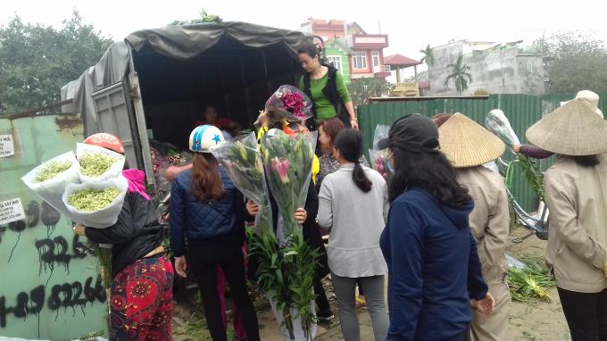 Do ảnh hưởng của thời tiết, hoa ly nở không đúng dịp tết người trồng hoa bó hoa thành từng bó rồi mang ra vỉa hè trên đường Lạc Long Quân, Tây Hồ bán với giá rẻ.