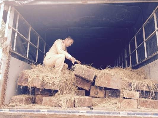 Xe tải gỗ Gụ không có giấy tờ hợp lệ.
