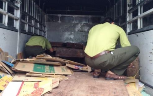 Lực lượng chức năng đang kiểm tra số gỗ trên xe.