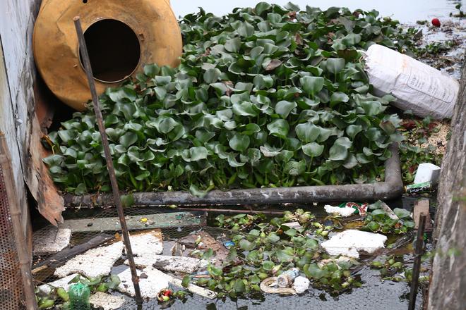 Vị trí cống thải phía sau một nhà hàng nổi ven đường Nguyễn Đình Thi.