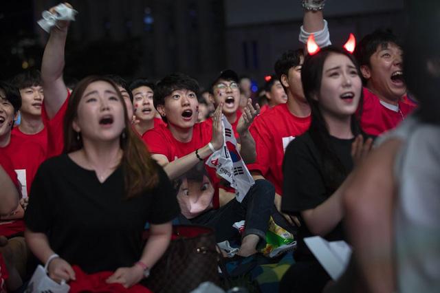 Và các fan tại quê nhà Hàn Quốc